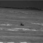 Marte: notizie da Spirit e Opportunity