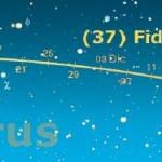 C'è solo (37) Fides