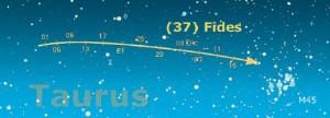 percorso dell'asteroide (37) Fides durante il periodo dal 1 novembre al 15 dicembre