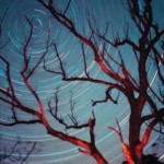 Il Cielo di Dicembre – Effemeridi e Fenomeni