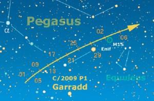 La C/2009 P1 (Garradd) sarà in luglio, da fine mese, l'unica cometa decentemente luminosa, al limite della rilevazione binoculare. Sarà possibile osservarla dalla mezzanotte in poi, alta una trentina di gradi sull'orizzonte est, situata nella parte ovest della costellazione di Pegaso. Il 29 luglio sarà in congiunzione con la luminosa stella Enif, mentre tra il 2/3 agosto potrebbe transitare sull'ammasso globulare M15.
