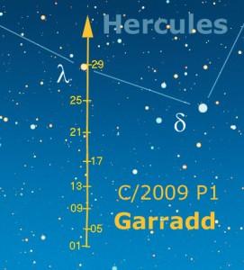 Garradd