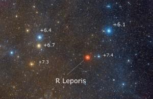 R Leporis
