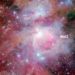 Nella luce della Nebulosa di Orione