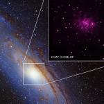 Andromeda buchi neri