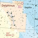 Tre perle di schiuma nel salto del Delfino