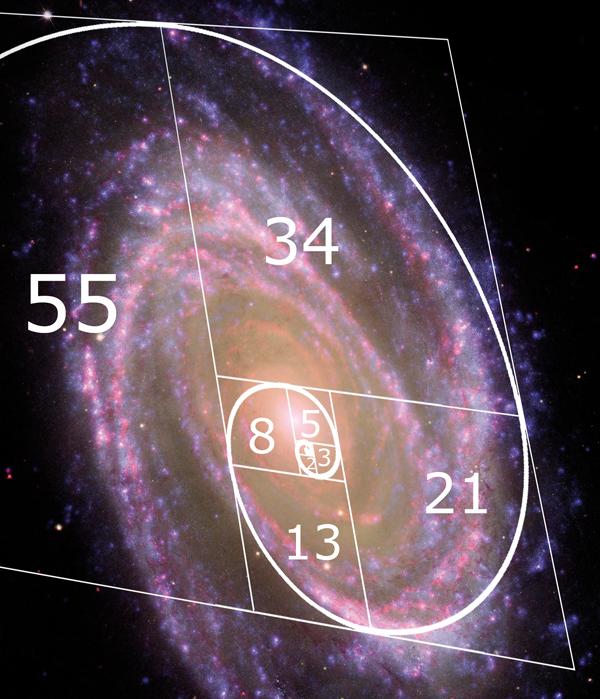 fibonacci m81