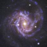 1) SN2014dt_M61-L-RGB