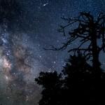 Comete - Rifa' capolino la C/2013 X1 PANSTARRS?