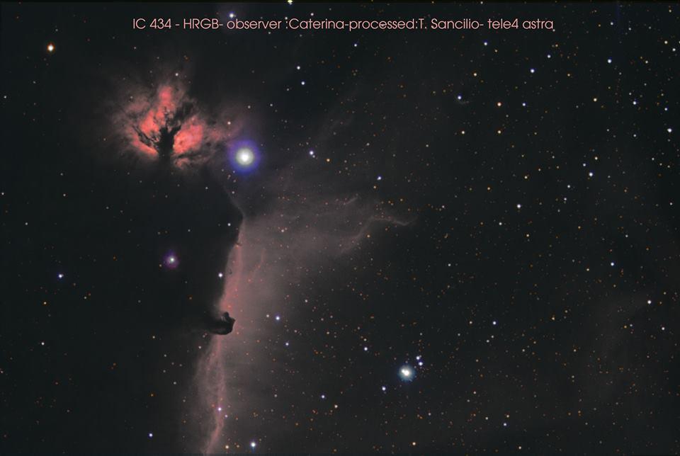 IC 434_Testa di Cavallo_ tele 4_Caterina Cioce _ Tommaso Sancilio