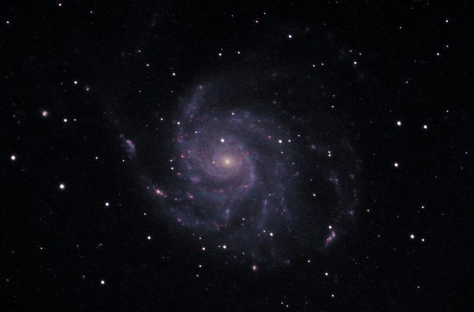 M101 Roberto Bellucco tele 1