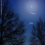 Allineamento Luna, Giove e Spica
