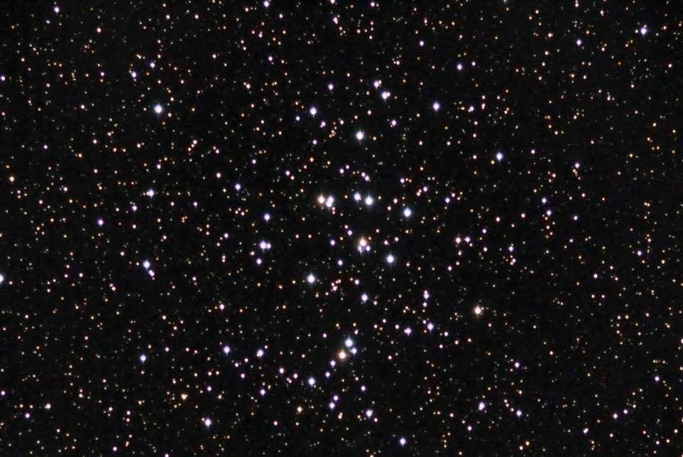 M44 Enzo Pedrini tele 4