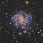 Una supernova luminosa in NGC 6946 a 100 anni dalla prima scoperta