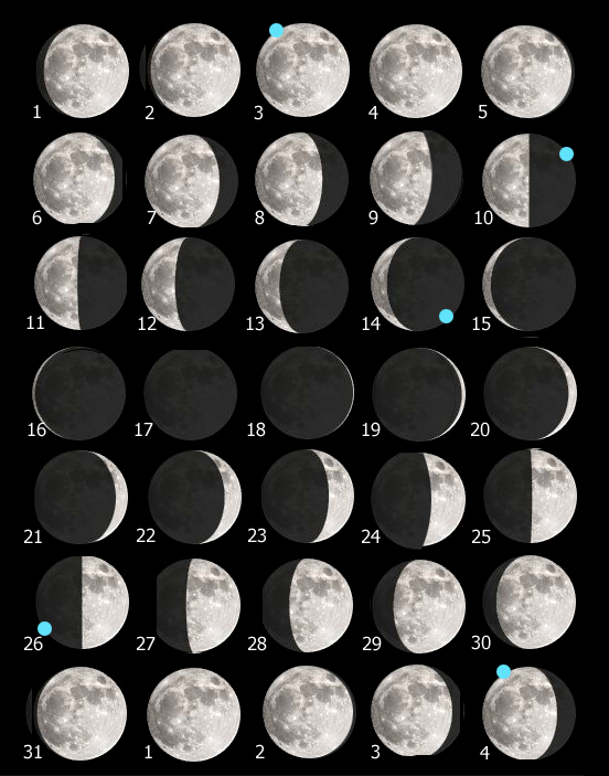 Tavola Luna 217