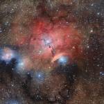 Sboccia alla vista una culla stellare