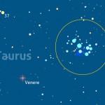Doppio appuntamento con Venere e Pleiadi e una bella congiunzione Luna e Regolo