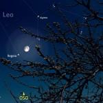 Una Luna (quasi) Piena e Regolo