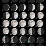 La Luna di Giugno 2019 e una guida all'osservazione ai crateri Stofler e Maurolycus