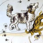 Canis Minor, il Cane Minore - Parte 1